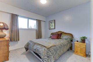 Photo 14: 22588 LEE Avenue in Maple Ridge: East Central House for sale : MLS®# R2539513