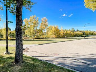 Photo 30: 8755 64 Avenue in Edmonton: Zone 17 House for sale : MLS®# E4263854