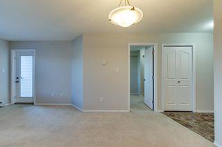 Photo 23: 420 274 MCCONACHIE Drive in Edmonton: Zone 03 Condo for sale : MLS®# E4265134
