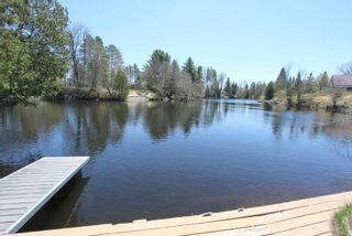 Photo 2: 221 Shuttleworth Road in Kawartha Lakes: Rural Somerville House (Bungalow) for sale : MLS®# X4766437