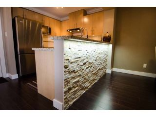 Photo 9: # 203 2998 SILVER SPRINGS BV in Coquitlam: Westwood Plateau Condo for sale : MLS®# V1052339