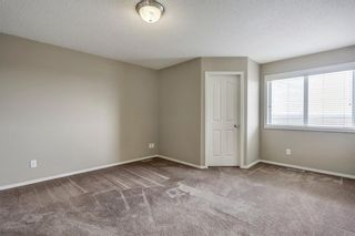 Photo 23: 51 Skyview Springs Cove NE in Calgary: Skyview Ranch Detached for sale : MLS®# C4186074