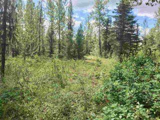 Photo 7: LOT 10 ISLAND PARK Drive in Prince George: Miworth Land for sale (PG Rural West (Zone 77))  : MLS®# R2388123