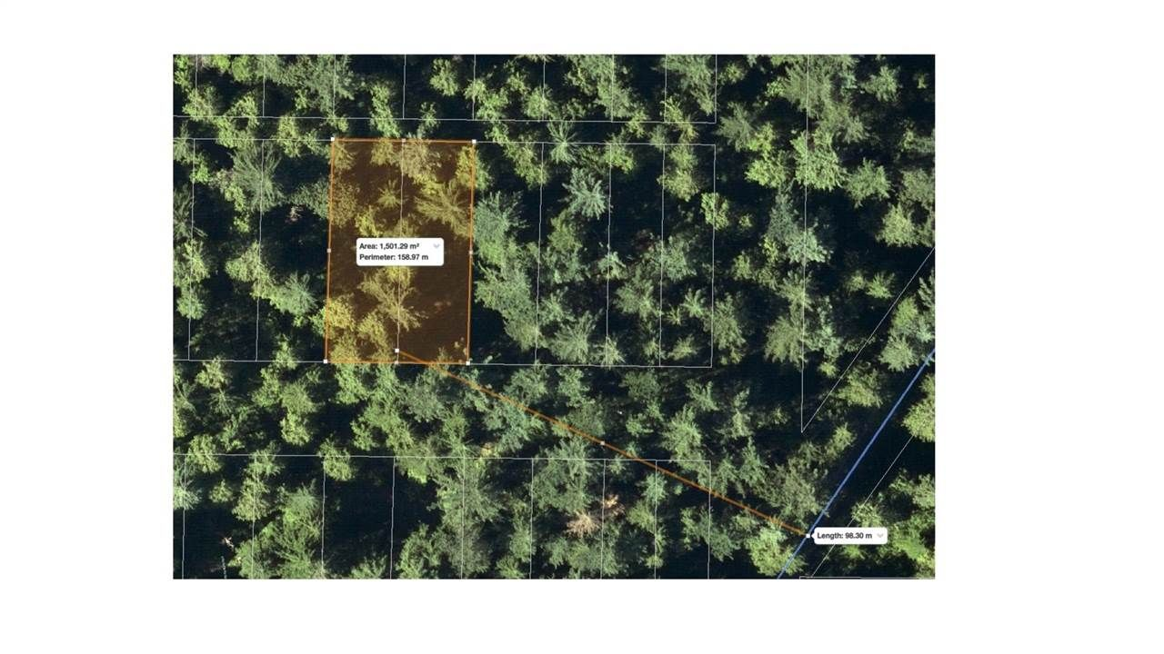"""Main Photo: Lot 31 INDIAN RIVER Drive in North Vancouver: Indian River Land for sale in """"Indian River Drive"""" : MLS®# R2615990"""
