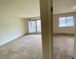 Photo 4: 306 45598 MCINTOSH Drive in Chilliwack: Chilliwack W Young-Well Condo for sale : MLS®# R2533654