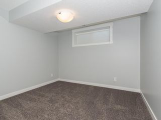 Photo 21: 166 SKYVIEW Circle NE in Calgary: Skyview Ranch Row/Townhouse for sale : MLS®# C4277691