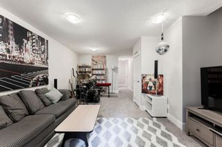 Photo 14: 2313 27 Avenue NW in Calgary: Banff Trail Detached for sale : MLS®# A1134167