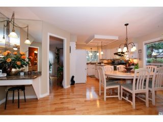 Photo 8: 13568 N 60A Avenue in Surrey: Panorama Ridge House for sale : MLS®# F1432245
