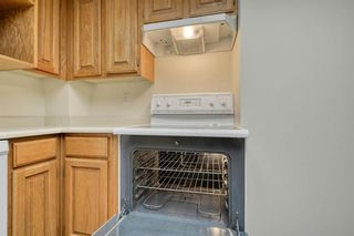 Photo 12: 201 2425 90 Avenue SW in Calgary: Palliser Apartment for sale : MLS®# A1052664