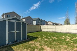 Photo 29: 47 BRIDLEPOST Green SW in Calgary: Bridlewood Detached for sale : MLS®# C4296082