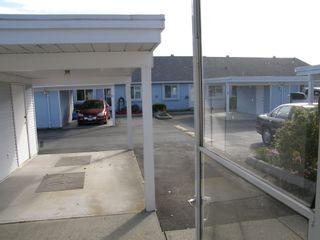 Photo 4: 4 23580 Dewdney Trunk Road in St George's Village: Home for sale : MLS®# V975203