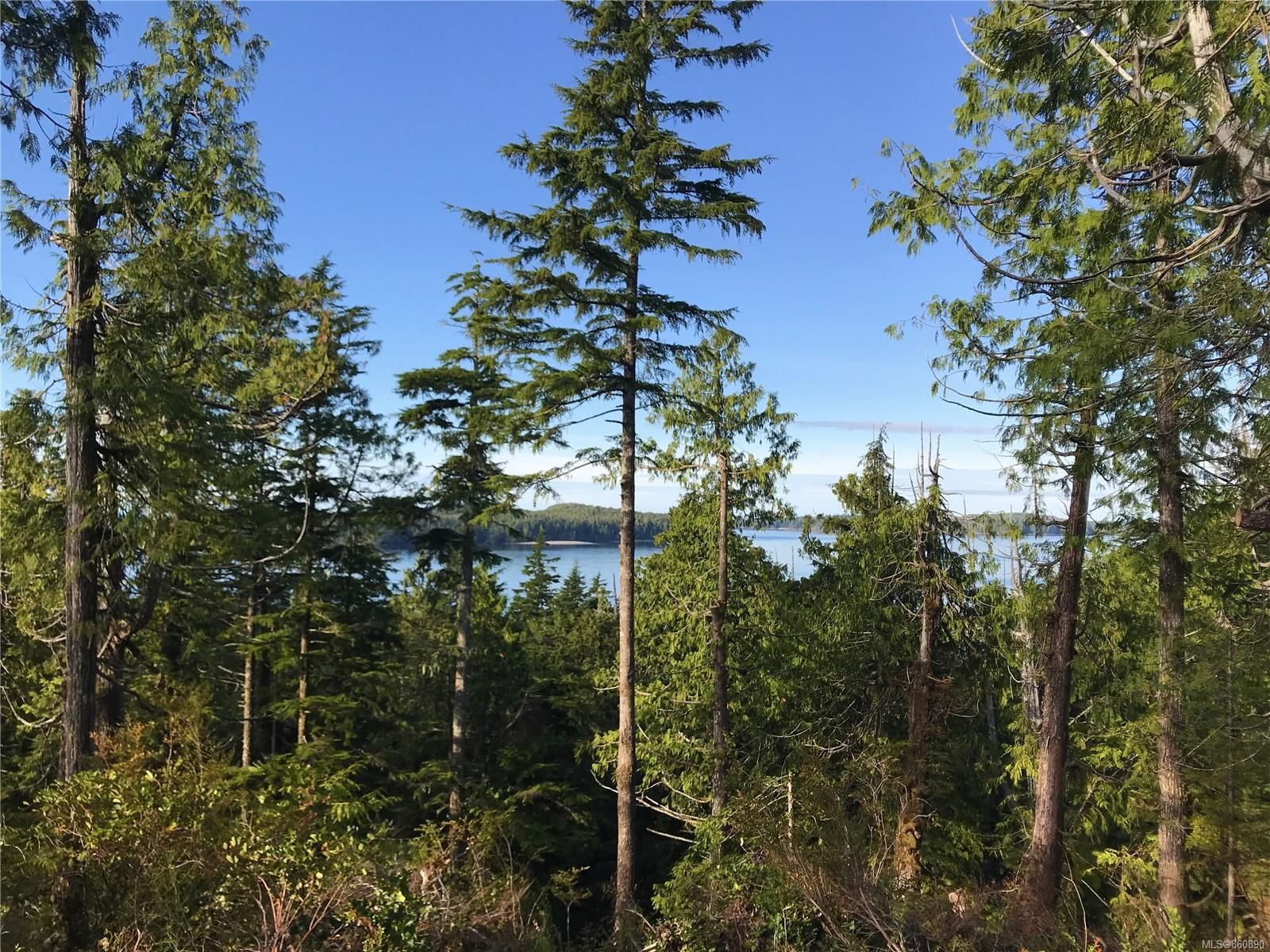 Photo 8: Photos: LOT 1 Tonquin Park Rd in : PA Tofino Land for sale (Port Alberni)  : MLS®# 860890