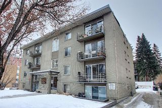 Photo 2: 303 215 25 Avenue SW in Calgary: Mission Apartment for sale : MLS®# A1063932