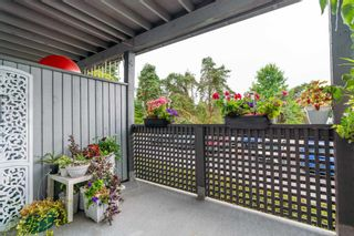 """Photo 18: 149 200 WESTHILL Place in Port Moody: College Park PM Condo for sale in """"WESTHILL PLACE"""" : MLS®# R2608316"""