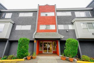 """Photo 2: 303 5664 200 Street in Langley: Langley City Condo for sale in """"Langley Village"""" : MLS®# R2624144"""