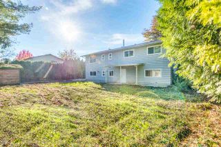 Photo 7: 12040 188A Street in Pitt Meadows: Central Meadows House for sale : MLS®# R2517684