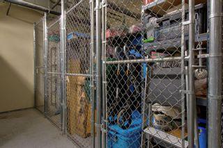 Photo 42: 501 2755 109 Street in Edmonton: Zone 16 Condo for sale : MLS®# E4254917