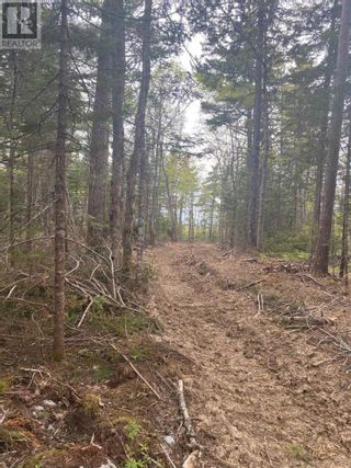 Photo 6: West Caledonia in Whiteburn Mines: Vacant Land for sale : MLS®# 202112919