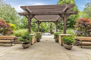 """Photo 33: 214 2478 WELCHER Avenue in Port Coquitlam: Central Pt Coquitlam Condo for sale in """"HARMONY"""" : MLS®# R2616444"""