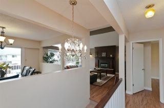 Photo 15: 8851 DEMOREST Drive in Richmond: Saunders House for sale : MLS®# R2203638