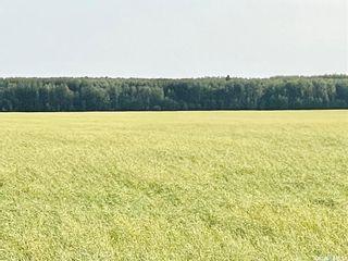Photo 1: RM 486 5 Quarter Land in Moose Range: Farm for sale (Moose Range Rm No. 486)  : MLS®# SK867716
