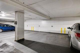 Photo 33: 208 9903 104 Street in Edmonton: Zone 12 Condo for sale : MLS®# E4264156