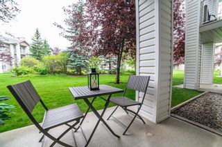 Photo 16: 3136 6818 Pinecliff Grove NE in Calgary: Pineridge Apartment for sale : MLS®# A1132445