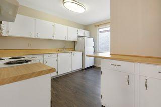 Photo 16: 4314 38 Street in Edmonton: Zone 29 House for sale : MLS®# E4225194