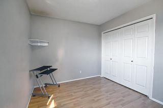 Photo 32: 327 Taravista Street NE in Calgary: Taradale Detached for sale : MLS®# A1125170