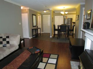 """Photo 6: #206 33688 KING RD in ABBOTSFORD: Poplar Condo for rent in """"COLLEGE PARK PLACE"""" (Abbotsford)"""