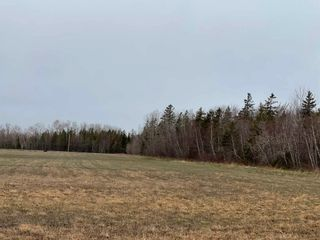 Photo 4: Lot 2-20 Schooner Lane in Brule Point: 103-Malagash, Wentworth Vacant Land for sale (Northern Region)  : MLS®# 202109386