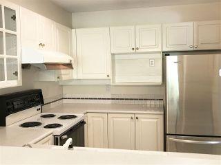 "Photo 5: 313 8880 JONES Road in Richmond: Brighouse South Condo for sale in ""REDONDA"" : MLS®# R2367593"
