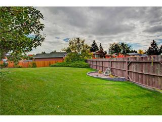 Photo 14: 545 RUNDLEVILLE Place NE in Calgary: Rundle House for sale : MLS®# C4079787