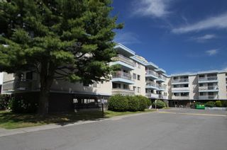 Photo 1: #210 6340 Buswell Street in Richmond: Condo for sale : MLS®# V1078631
