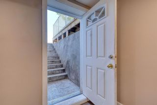 Photo 45: 79 Rundlefield Close NE in Calgary: Rundle Detached for sale : MLS®# A1040501