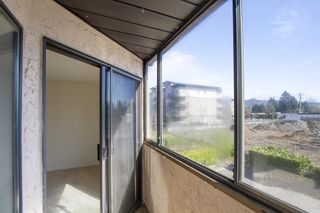 """Photo 16: 31 11900 228 Street in Maple Ridge: East Central Condo for sale in """"MOONLIGHT GROVE"""" : MLS®# R2562684"""