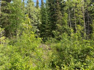 "Photo 5: LOT 6 CHIEF LAKE Road in Prince George: Nukko Lake Land for sale in ""CHIEF LAKE"" (PG Rural North (Zone 76))  : MLS®# R2464872"
