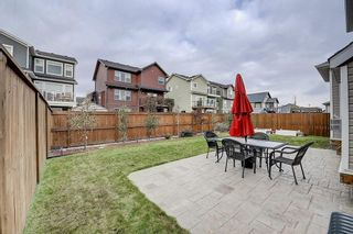 Photo 39: 132 WATERLILY Cove: Chestermere Detached for sale : MLS®# C4306111