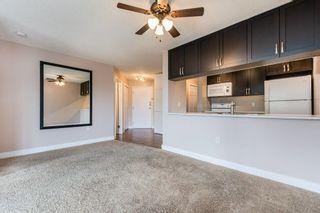 Photo 13: 307 9620 174 Street in Edmonton: Zone 20 Condo for sale : MLS®# E4253956