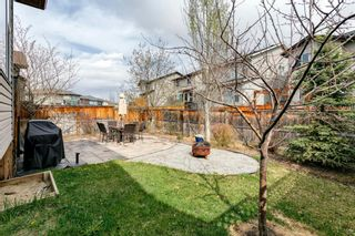Photo 41: 31 BRIGHTONCREST Common SE in Calgary: New Brighton Detached for sale : MLS®# A1102901
