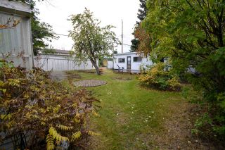 Photo 11: 9123 116 Avenue in Fort St. John: Fort St. John - City NE House for sale (Fort St. John (Zone 60))  : MLS®# R2307735