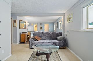 Photo 32: 3820 Cardie Crt in : SW Strawberry Vale House for sale (Saanich West)  : MLS®# 865975