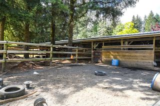 Photo 49: 4737 Gordon Rd in : CR Campbell River North House for sale (Campbell River)  : MLS®# 863352