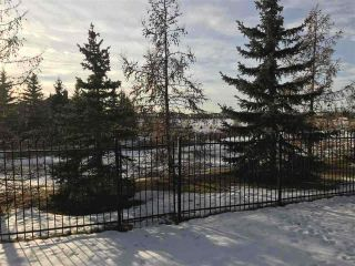 Photo 4: 1089 TORY Road in Edmonton: Zone 14 Vacant Lot for sale : MLS®# E4229905