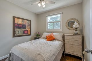 Photo 16: 6364 32 Avenue NW in Calgary: Bowness Detached for sale : MLS®# C4301568