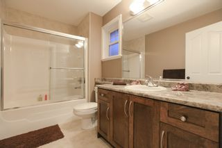 Photo 17: 10302 244TH Street in Maple Ridge: Albion House for sale : MLS®# V1134259