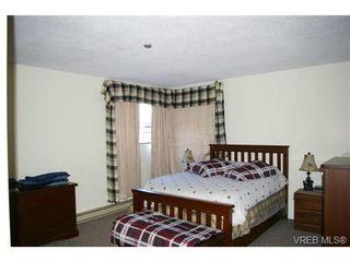 Photo 4: 106 420 Parry St in VICTORIA: Vi James Bay Condo for sale (Victoria)  : MLS®# 695851