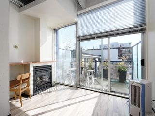 Photo 10: 206 1061 FORT St in : Vi Downtown Condo for sale (Victoria)  : MLS®# 870312