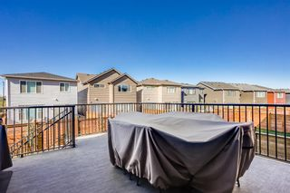 Photo 28: 29 Howse Terrace NE in Calgary: Livingston Detached for sale : MLS®# A1150423