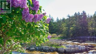 Photo 18: Lot Maiden Hair Island in Lahave Islands: Vacant Land for sale : MLS®# 202114713